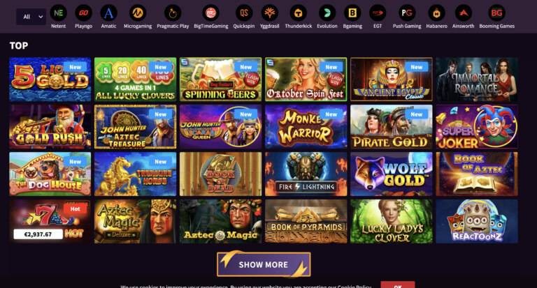 Play the Best Casino Games at Wild Blaster