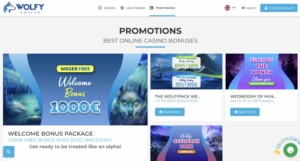 Promotions and Bonuses at Wolfy Casino